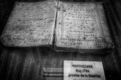 14 Timisoara 2021 Muzeul Catedralei