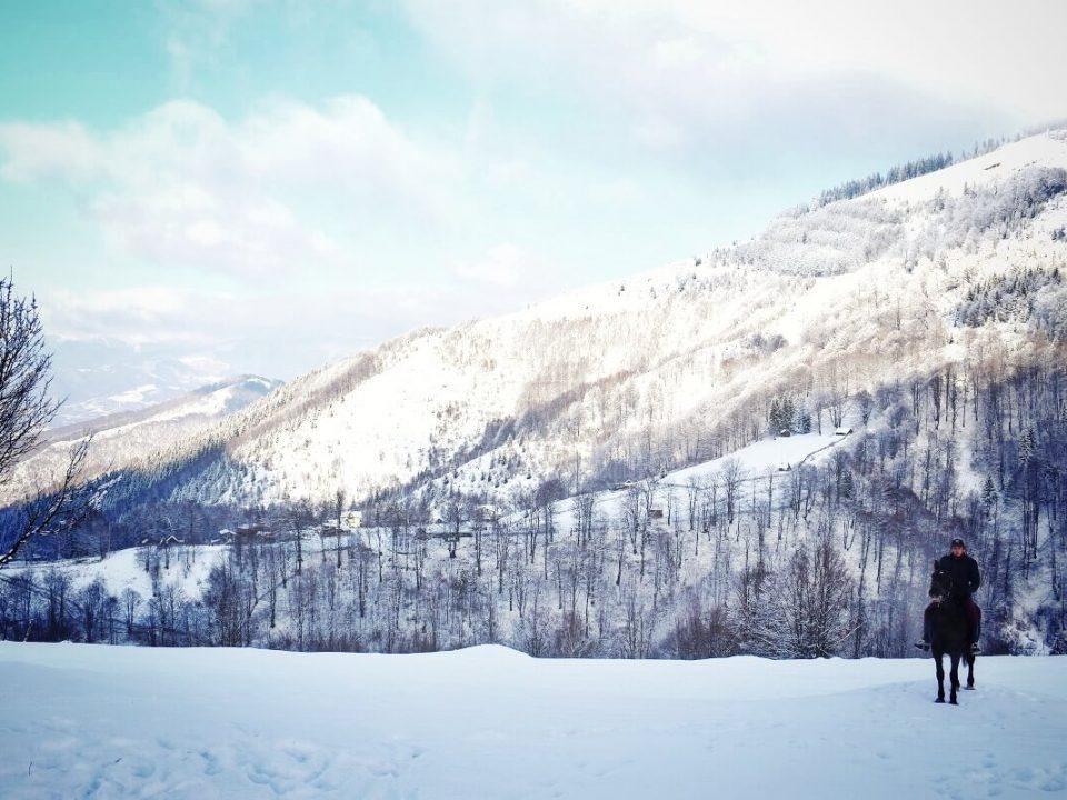 Ținutul Momârlanilor Drumeție Călare @ Carpathian Horse Trekking 6
