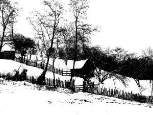 Glia strămoșească… satul de momarlani din CIMPA