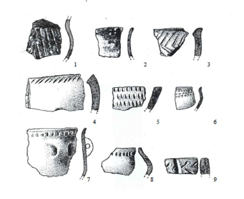 Cultura COTOFENI GABI VACUTA Muzeul Portile de FIER