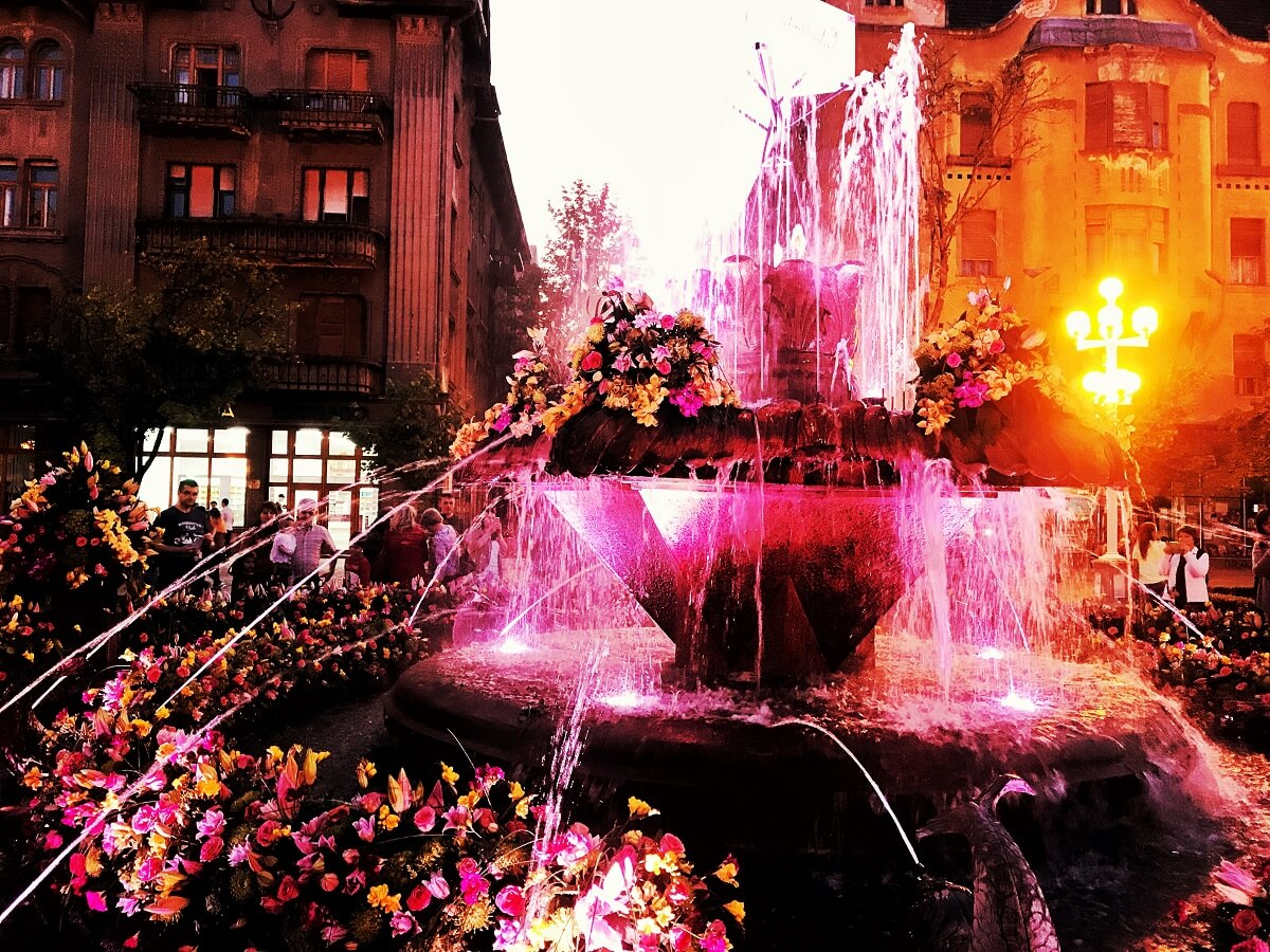 Timisoara centru fantana cu pesti cu flori