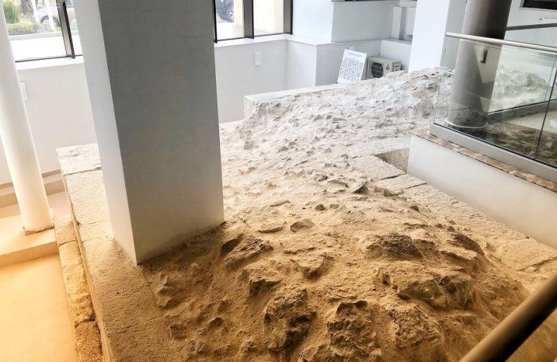 Orașul Antic Callatis – Sit arheologic restaurat la subsolul hotelului Belvedere din Mangalia 4