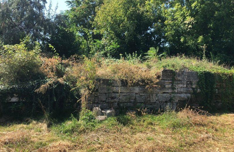 Planul de urbanism Mangalia – Buruienile antice 1