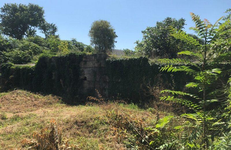 Planul de urbanism Mangalia – Buruienile antice 2