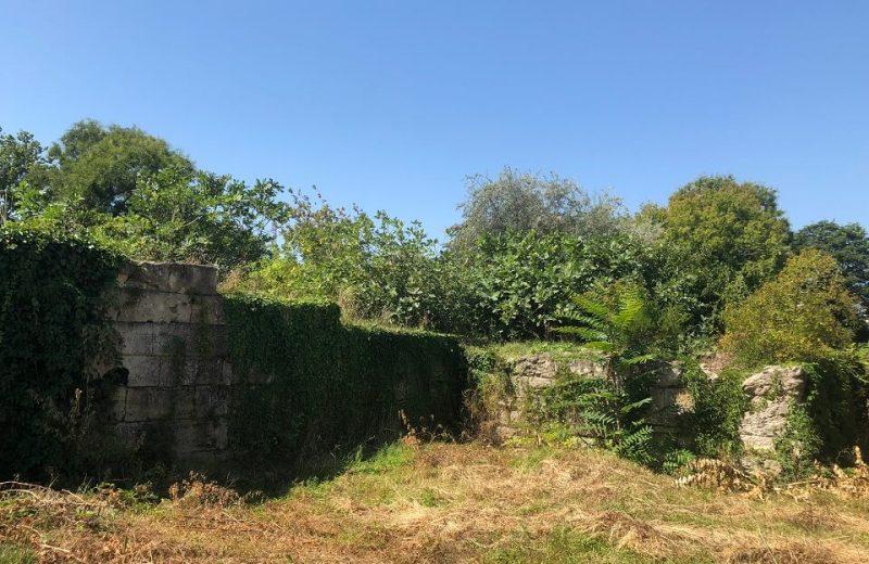 Planul de urbanism Mangalia – Buruienile antice 3