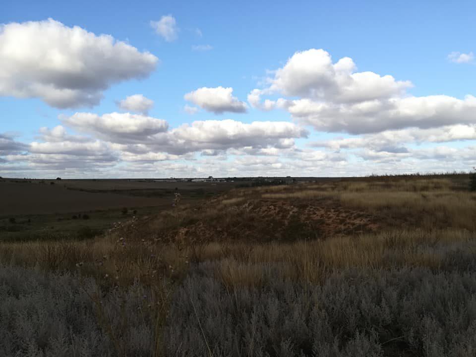 Pământul vechi al Dobrogei – Pădurea Hagieni 8