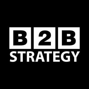 B2B Strategy™