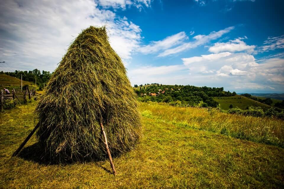 Zone folclorice din Hunedoara - Cerbăl
