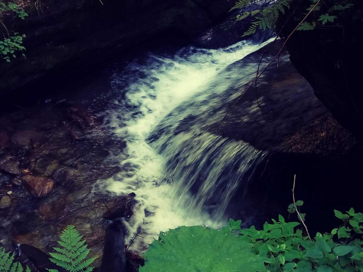 Valea Morii