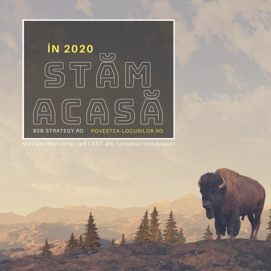 Zimbrul legenda în libertate din Munții României strategie turism pandemie Povestea Locurilor Storytelling