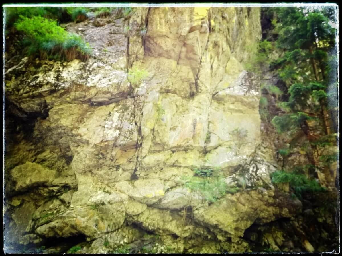 12. A Urieșul din Valea Mării