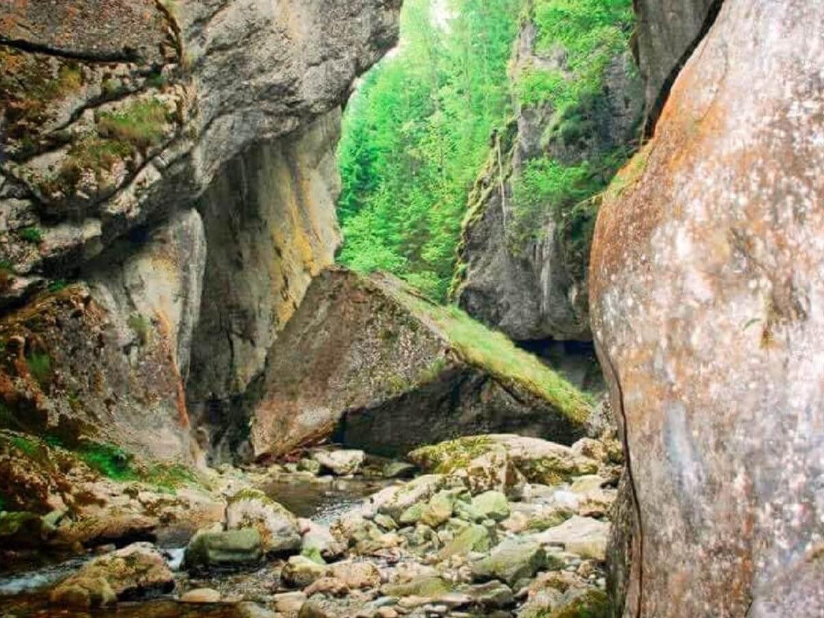 15. Megalitul din Cheile Buții