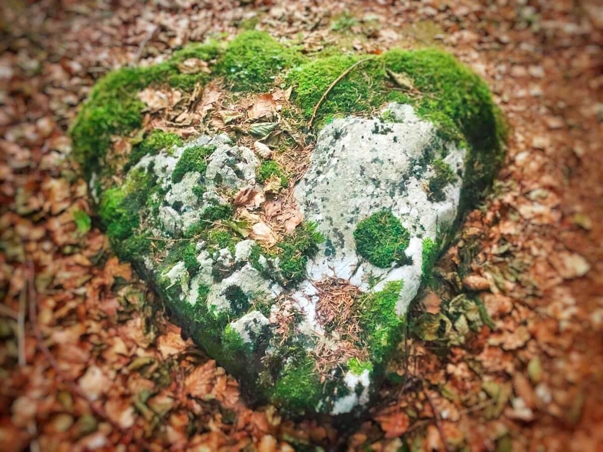36 b Inima de piatră din Poiana Iarului