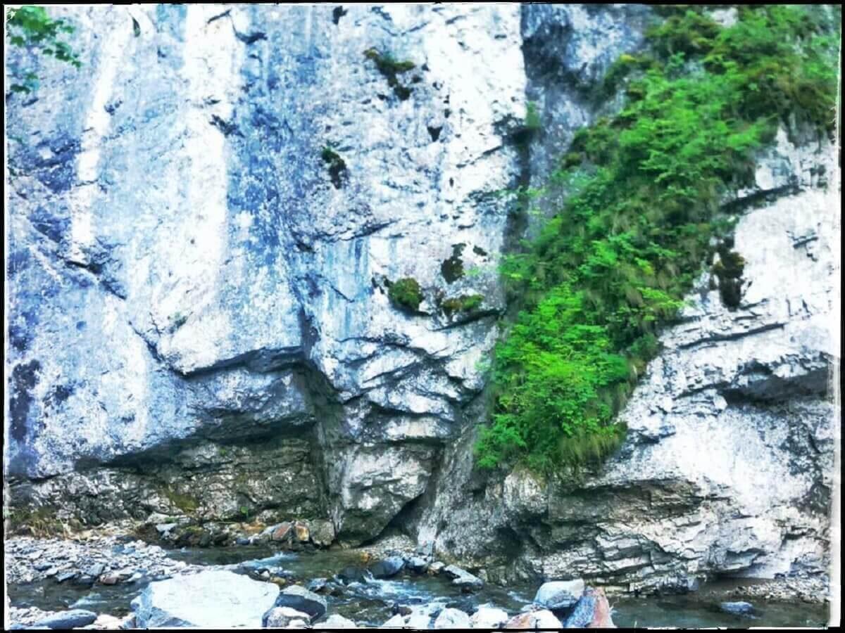 7. Urieșul din Gârbovu (Cheile Scocului Valea Boului)