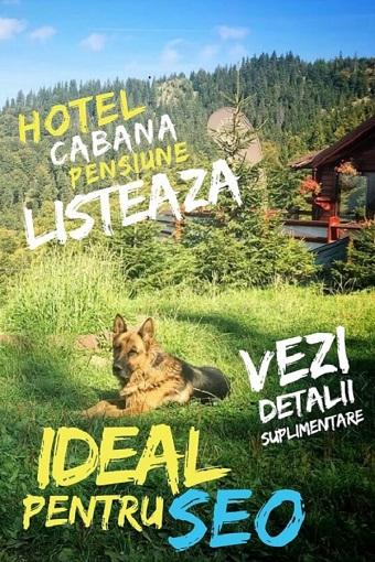 Director-pensiuni-hoteluri-cabane-Turist-INFO-unități-de-cazare