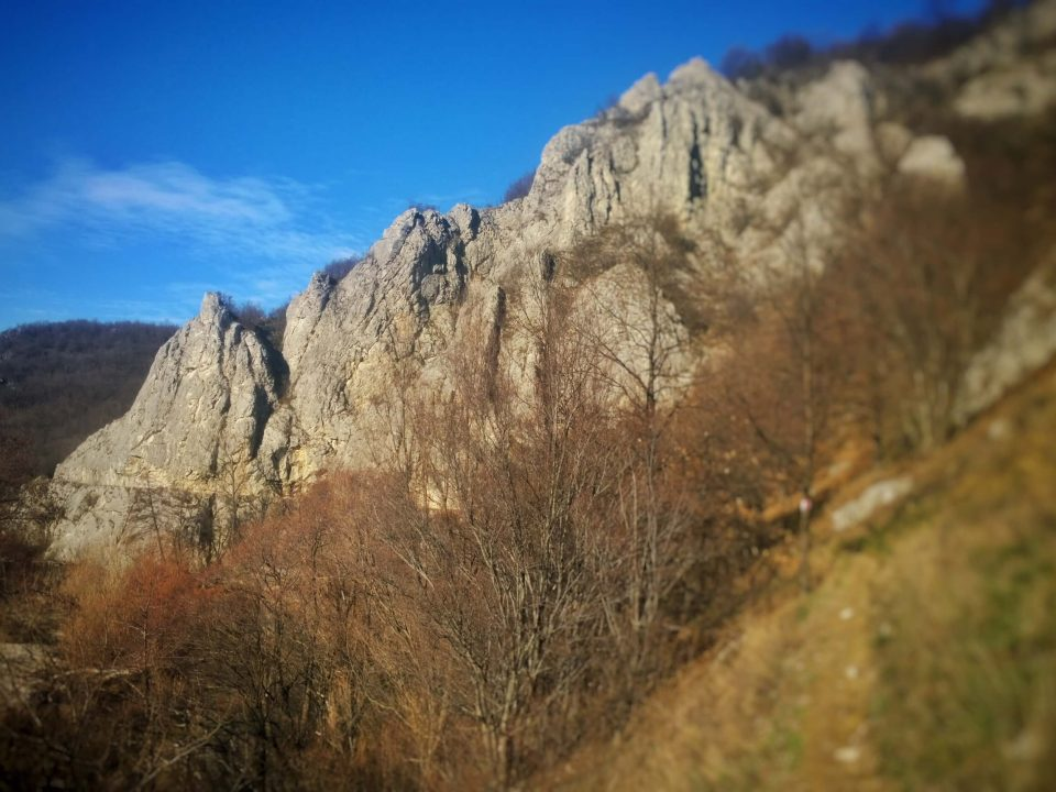 Tunelurile de la Sasca Română 6