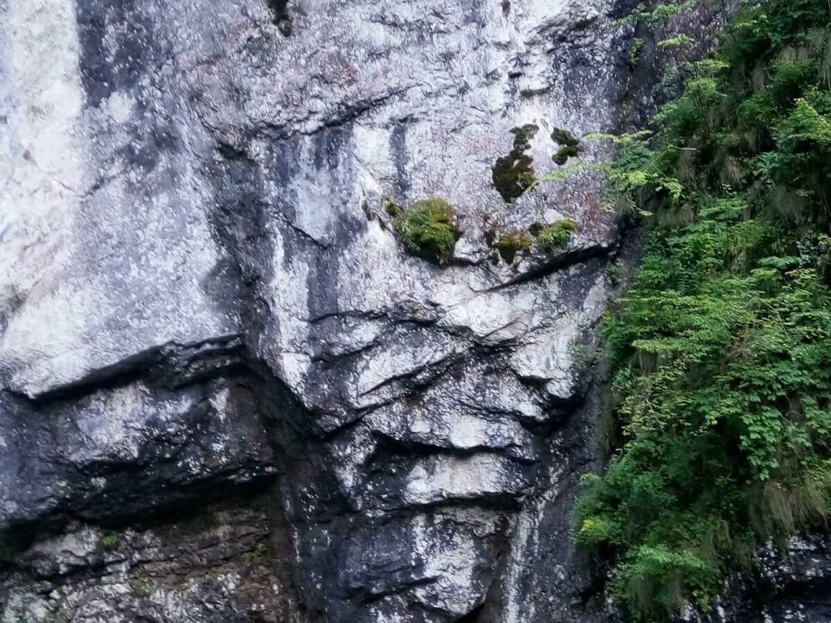Uriasul dinspre Poiana IARULUI Hyperborea Valea JIULUI Retezat panorama