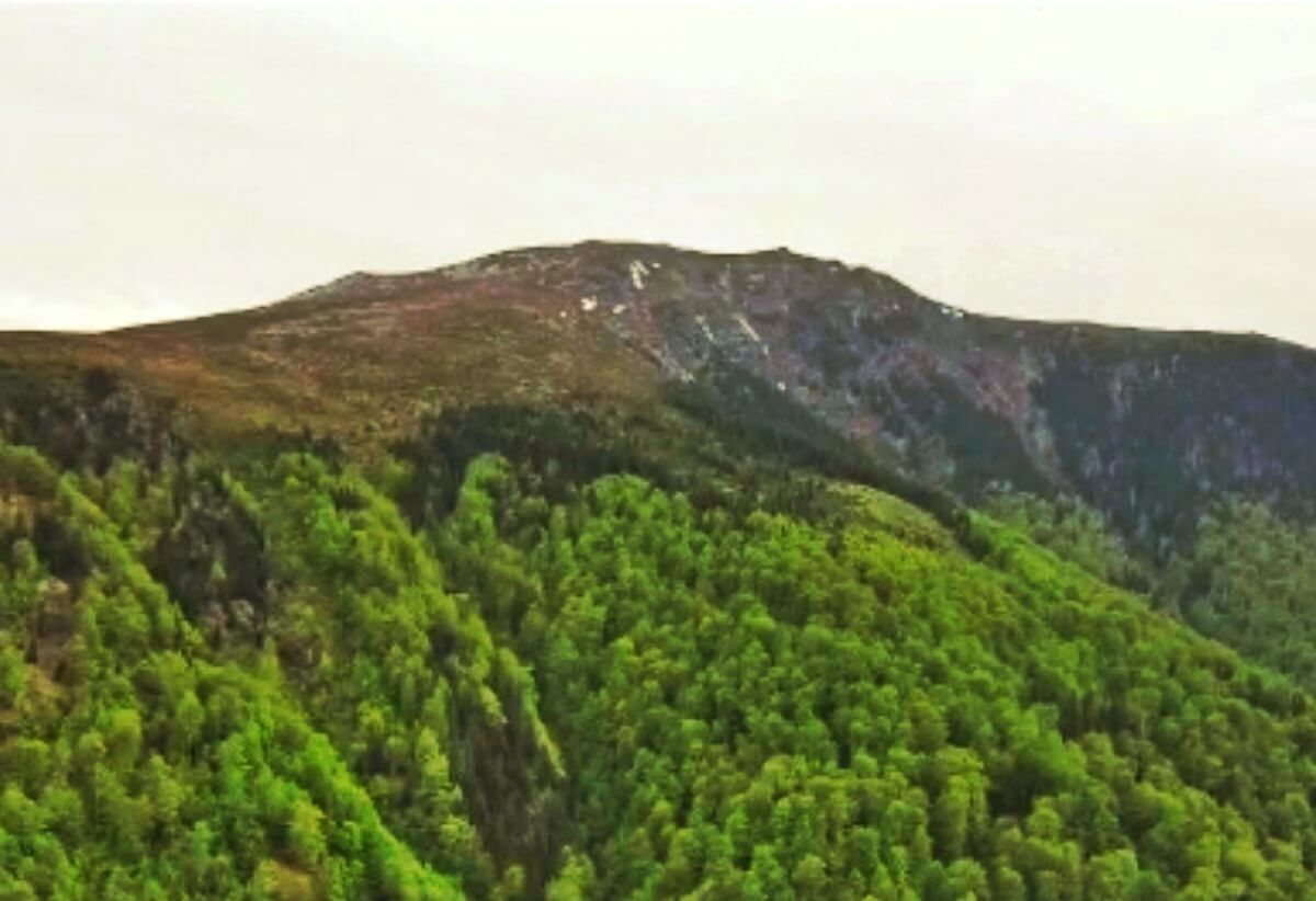 Drumul lui TRAIAN prin Pasul Valcan