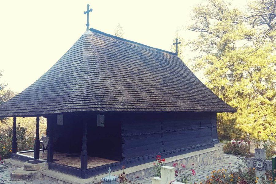 Mănăstirea Dintr-un Lemn 1