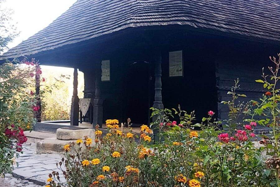 Mănăstirea Dintr-un Lemn 2