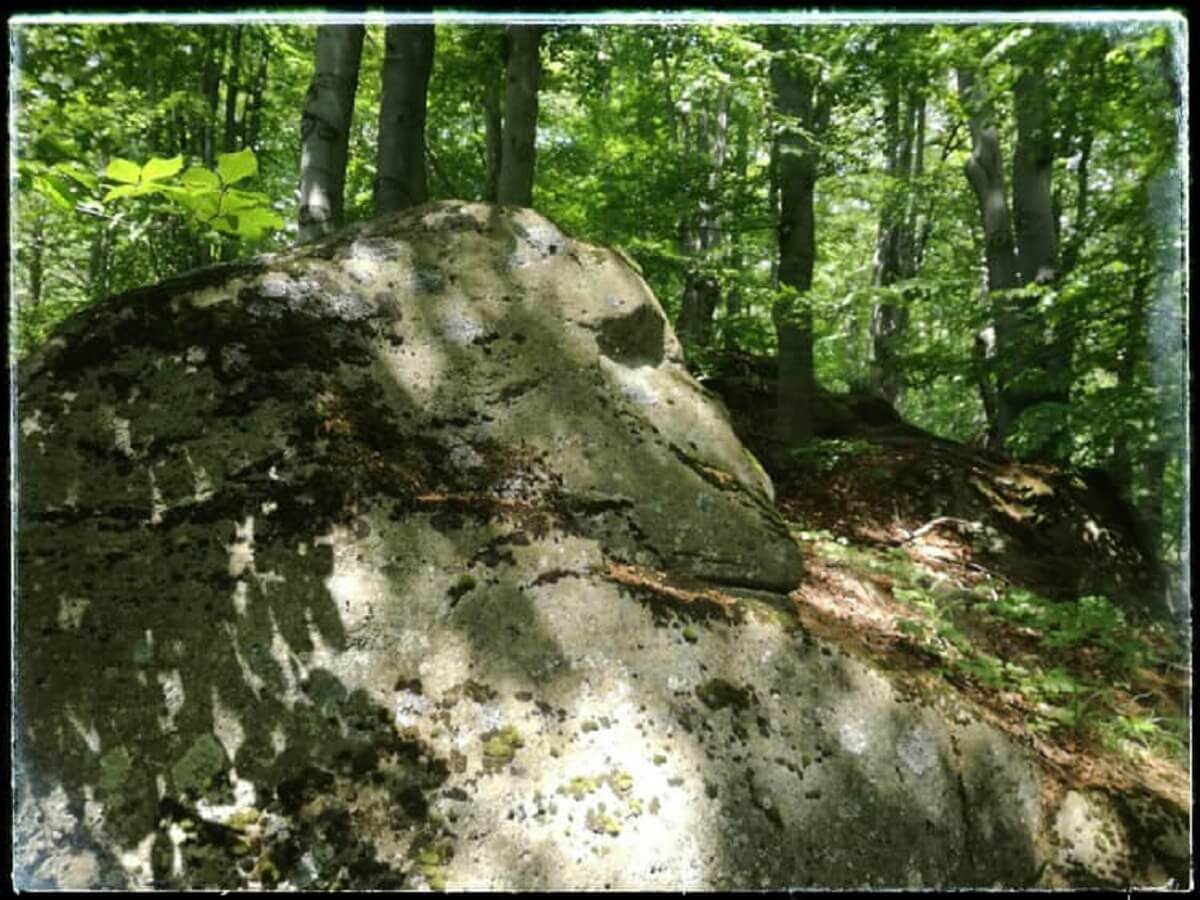 18. Sfinxul din Culmea Șerponi (2)