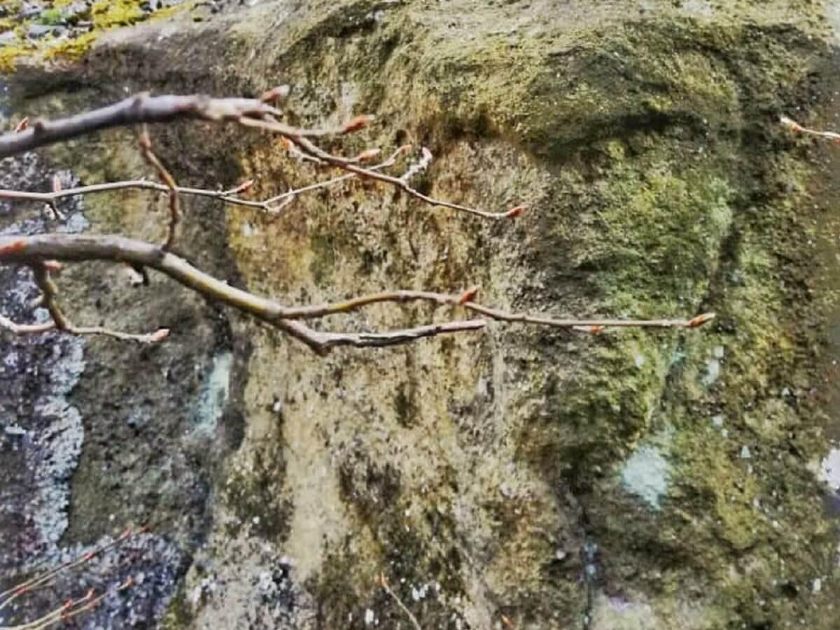 28 a Sfinxul din Bulzul Buhanilor