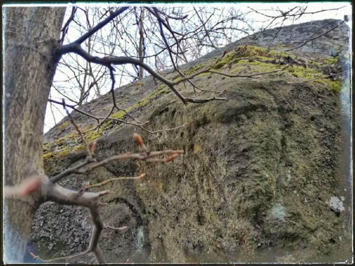 28 b Sfinxul din Bulzul Buhanilor