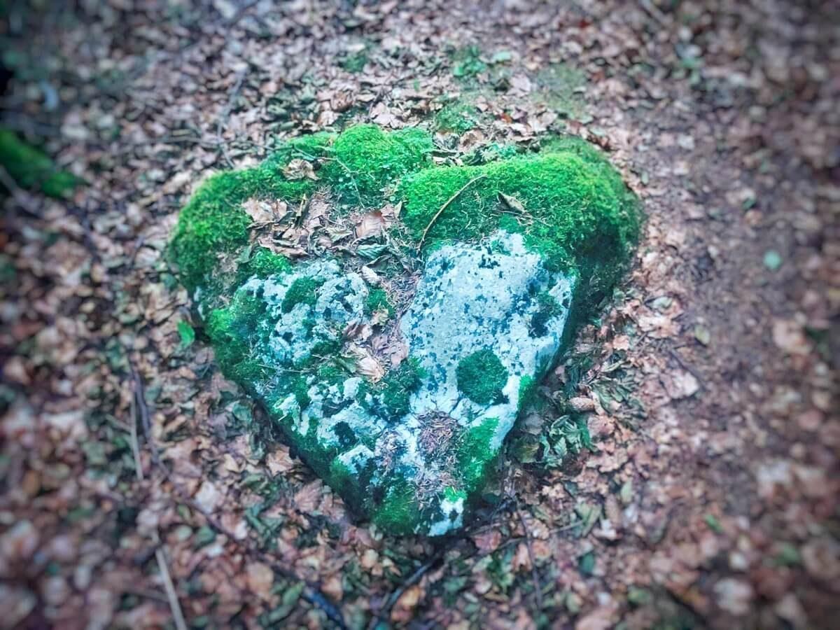 36 a Inima de piatră din Poiana Iarului