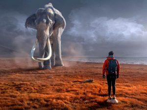 Colti de mamut